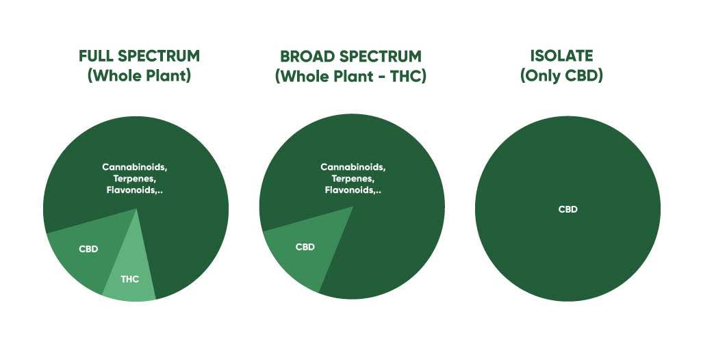 cbd wholesale extract options