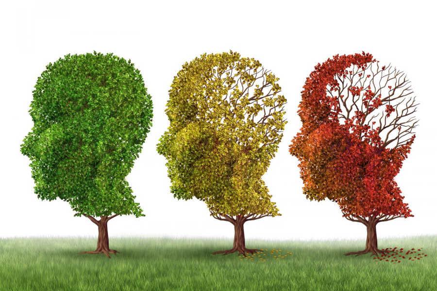 cbd and dementia | cbd for dementia | cbd dementia